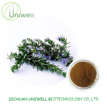 Rosemary Extract Rosmarinic Acid 5% Powder