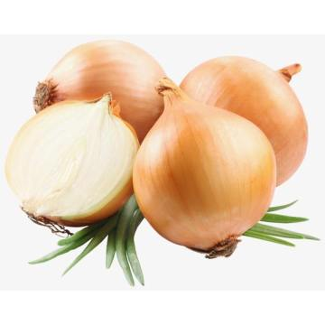 Yellow Onions with Sweet Taste
