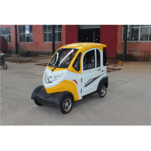 New Design Electric Car