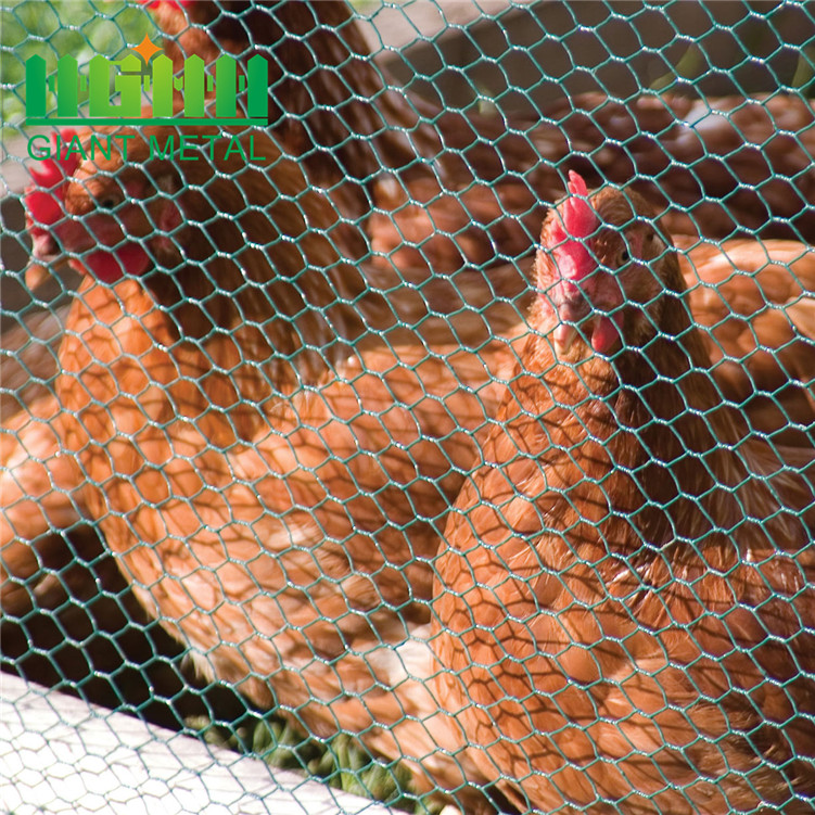 Free sample small hole chicken wire mesh