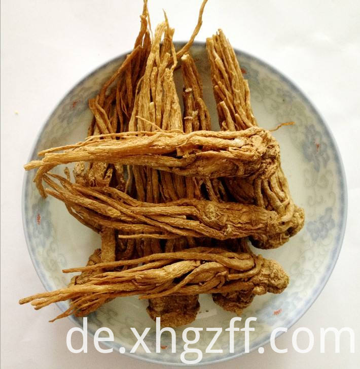 Angelica Root Essential Oil Uses