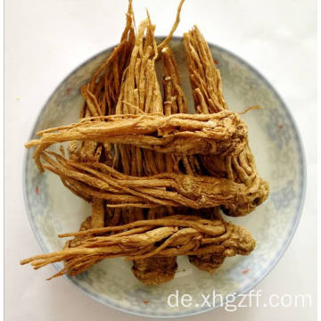 Angelica Root Essential Oil 50ml