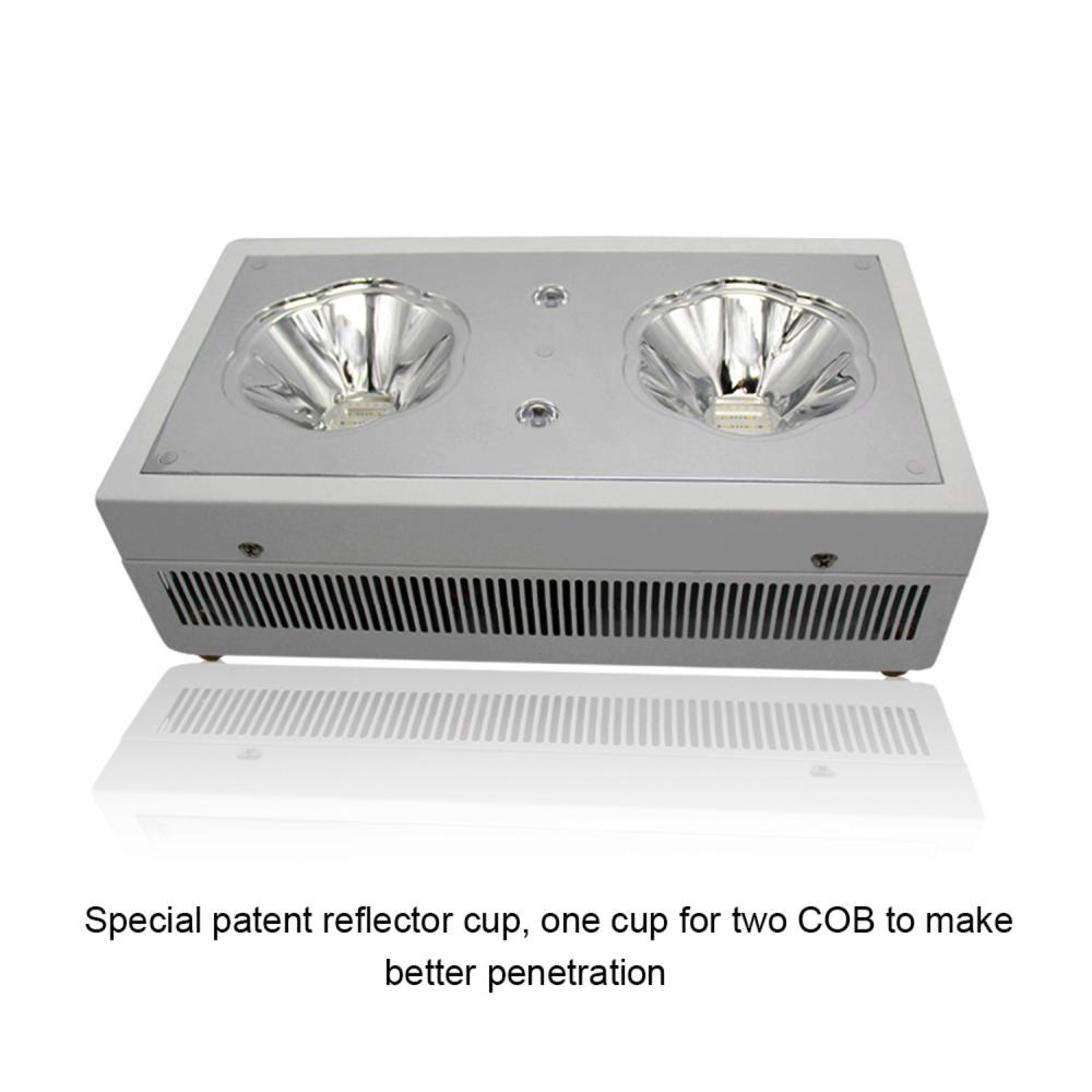 wholesale grow equipment 300W led grow lights