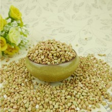 Chinese Sweet Buckwheat in shell