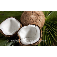 Coconut Activated Carbon With Water Purification goods