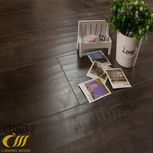 Germany technology Lmiante Floors