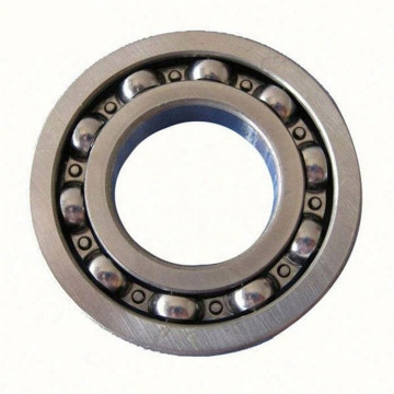 6407 6407N Deep Groove Ball Bearing SKF FAG