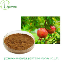 Punica Granatum Extract Ellagic Acid 50%-70%