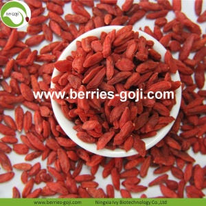 Factory Wholesale Nutrition Dry fruit Wolfberry