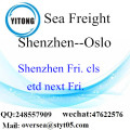 Shenzhen Port Sea Freight Shipping To Oslo