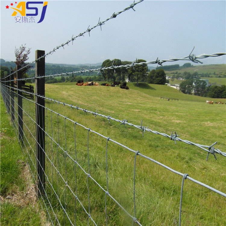 electro galvanized barbed wire cattle farm fencing