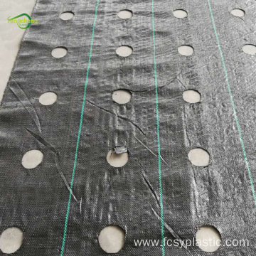 pp anti weed mat with holes