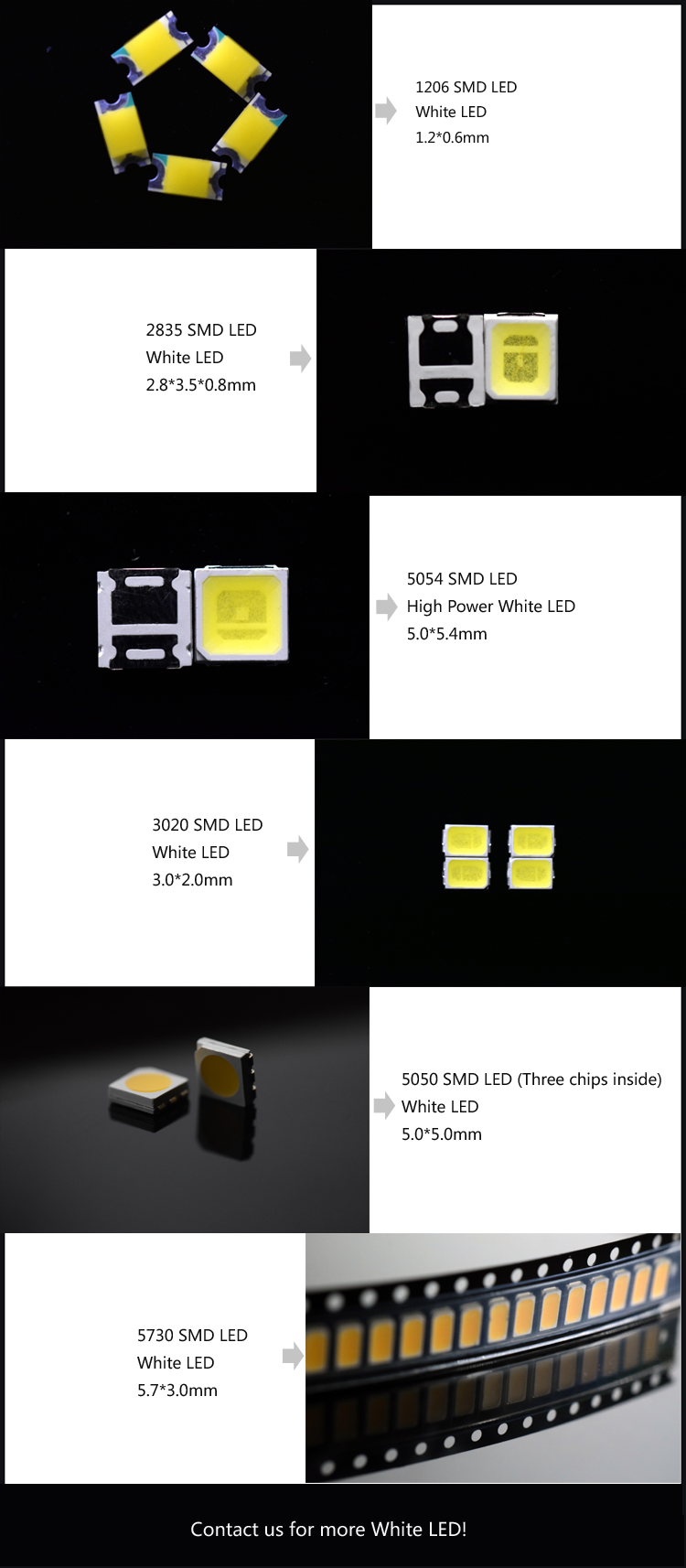 white LED catalog