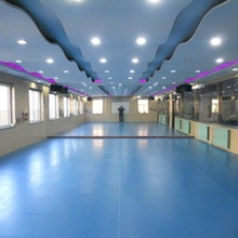 Indoor Professional PVC Synthetic Dance Room Flooring