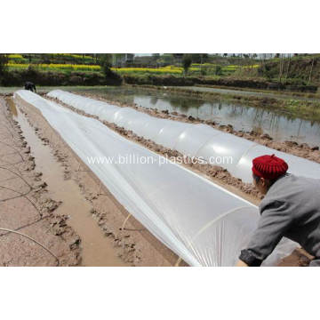Biodegradeable Weed Control Mulch Film