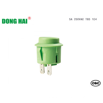 Green Push Button Switch 6A 10A