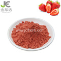 Wholesale Natural Freeze-dried strawberry fruit powder
