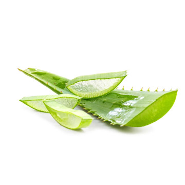 Sale Natural Face Oil Organic Aloe Vera Oil