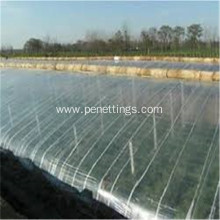 Agricultural Greenhouse Film for Agricultural Greenhouse