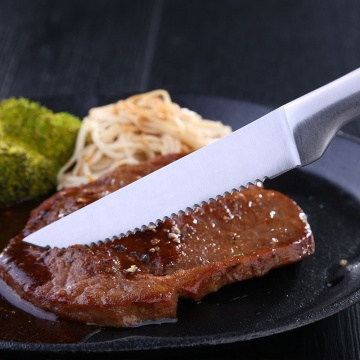 Stainless steel classic kitchen knife steak knife
