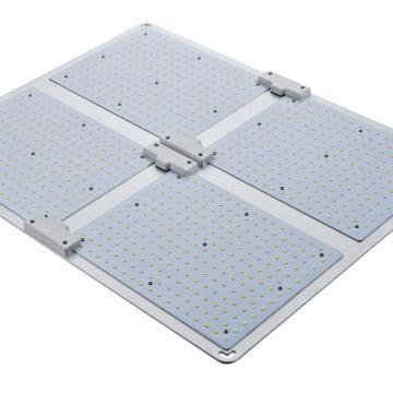 Four-head quantum board PD-L04