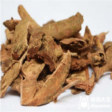 Natural Sanguisorbae Radix Garden Burnet Root Di Yu