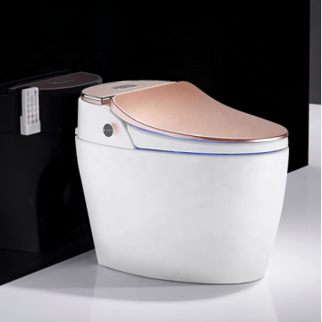 Intelligent  Water Closed Rose Gold Toilet