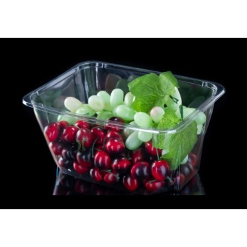 Disposable plastic fruit packaging box