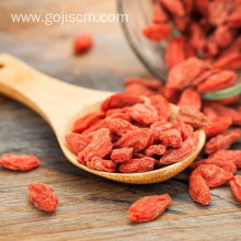 Ningxia goji berry with greater protective effects