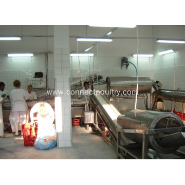 Feet processing equipment for slaughterhouse equipment