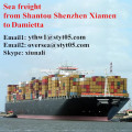 Shantou to Damietta full container sea shipping