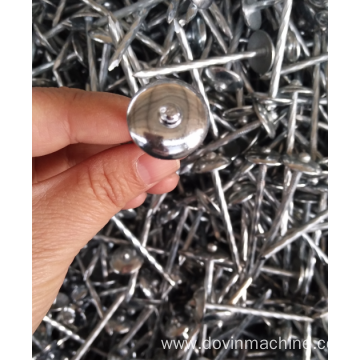 Different Size Nail Washer Wholesales