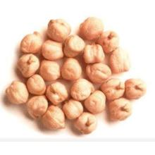 Good Quality Chickpea Beans