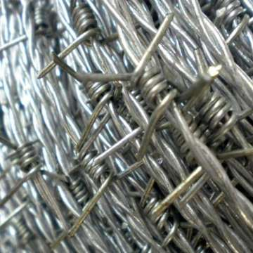 Factory price high quality galvanized