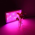 Led Grow Light Hydroponic mo Plant Plants