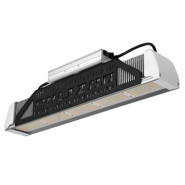 Samsung Led 240w Grow Light for Medical Plants
