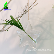 Star Shape Glass Flower Hanging Hydroponics Vases