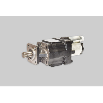 CBJ50-F100D20-B5H double gear pump