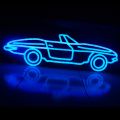 AUTO LED NEON ILLUMINATED Tandha