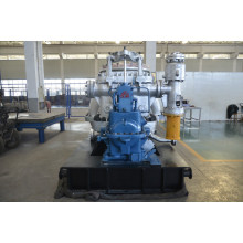 Impulse and Reaction Steam Turbine QNP