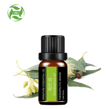 Top Grade100% pure Eucalyptus Essential Oil