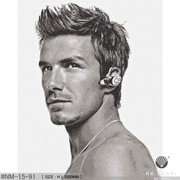 Beckham Series Art Wall Portrait Mosaic