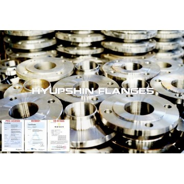 Stainless Steel JIS Slip On Plate Forging Flanges