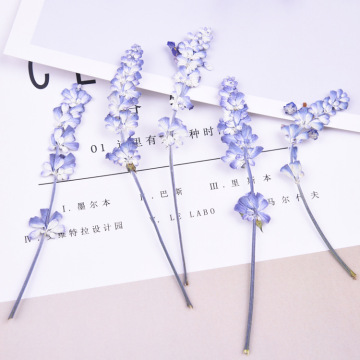 20pcs/lot,Natural Pressed flowers with stem,Eternal real rose flowers for DIY Wedding invitations Craft Photo Bookmark Gift Card