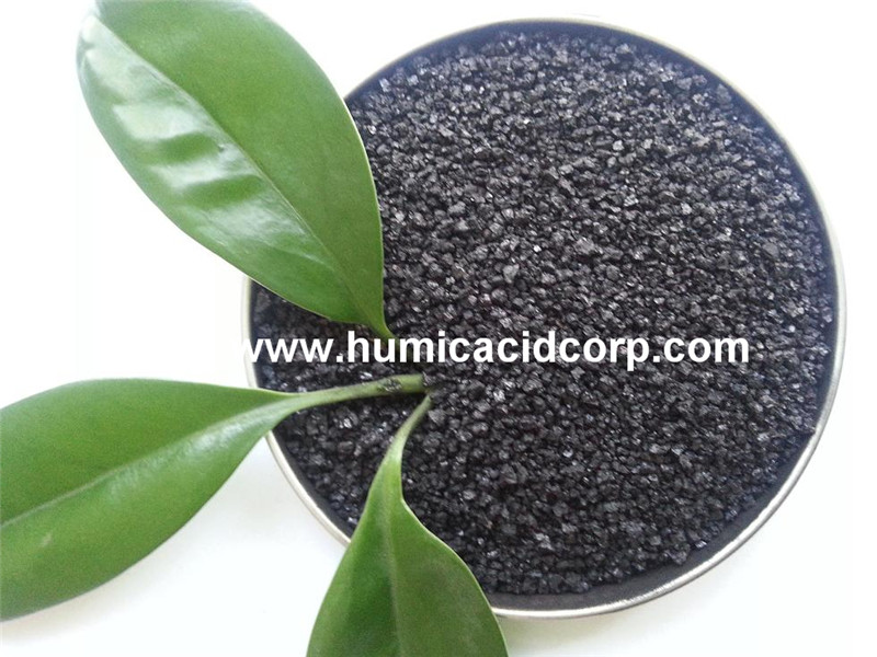 humic acid for aquaculture