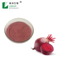 ISO Factory Provide Effective  beetroot juice powder