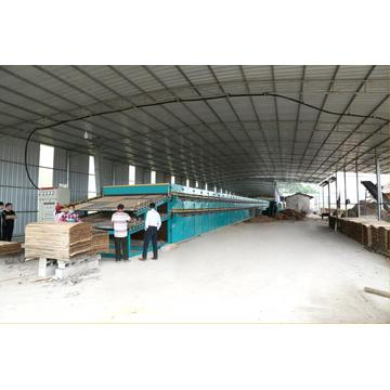 Environmental Biomass Veneer Drying Machine