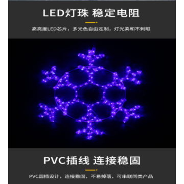 Outdoor Snowflake Modeling Lights