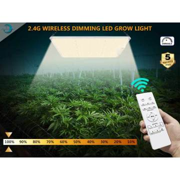 IP65 Square Led Grow Lighting For Medical Farm