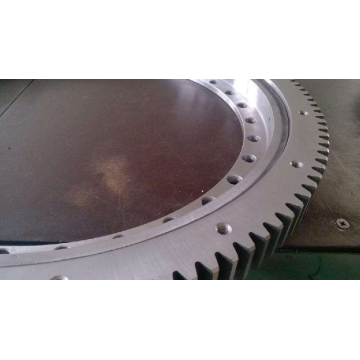 78872 Slewing Ring Bearing